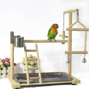 Parrot Tree Bird Stand Wood Parrot Stand Bird Training Tree Play Gym Center Toy