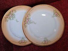 "PAIR Victorian Blush Peach/Ivory & Pink Rose 7"" Plates c1890/1900 - FREE UK POST"