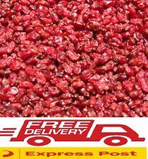 1kg Barberries Berberis vulgaris Berberine Red Berries Acne Digestive Issues