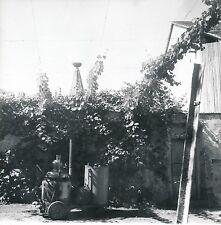 RIBEAUVILLIÉ c. 1950 - Alambic Tour des Cigognes Haut-Rhin - DIV 9763