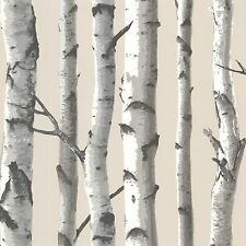 Birch tree wallpaper Wallpaper pattern TLL21499 DOUBLE roll