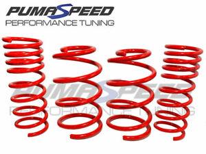 Pumaspeed Stance Lowering Springs Hyundai i30N