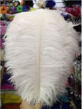 Wholesale 10-100pcs 6-24 inch/15-60 cm high quality natural Ostrich feathers