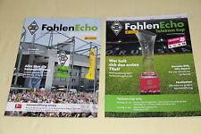 Fohlenecho Borussia Mönchengladbach Saisoneröffnung 12/13 Telekom Cup 2013