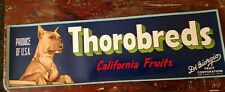 Thorobreds Brand Grape Crate Label California 1940'S Boxer Great Dane