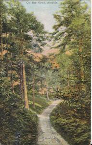 Cumbria Postcard - On The Knot - Arnside - Ref TZ6241