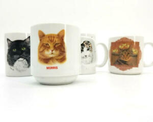 Crazy Cat Lady Cup Mug Collection Set of 4 Morris, Glenna Hartwell Whalen