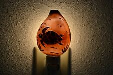 CARVED TIGER COWRIE TURTLE SEA SHELL NIGHT LIGHT KITCHEN #7628