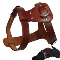 Genuine Leather Dog Harness Heavy Duty for Small to Large Dogs K9 Rottweiler