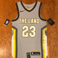 Nike Connect Cleveland Cavaliers The Land LeBron James Swingman Jersey sz 40 (S)