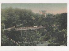 Rustic Bridge Alum Chine Bournemouth [JWS 83] Vintage Postcard 800a