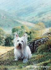 Steven Townsend WESTIE West Highland White Terrier Dogs