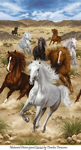 """Untamed Horses Panel 24x44"""" cotton quilt fabric Timeless Treasures"""