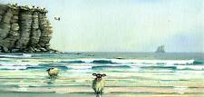 """Mark Denman picture """" Tombstoning """" signed print of sheep cliff diving"""