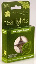 Vermont Soy Way Out Wax TEALIGHT CANDLES 4 pack  Northern Forest