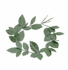 Unisex Roman Green Laurel Leaf Headband Toga Party Fancy Dress Costume Accessory