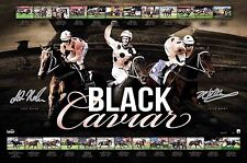 Black Caviar Retirement Signed Print Luke Nolen Peter Moody SALE ON NOW