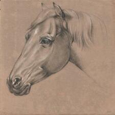 FINE OLD MASTER HORSE PORTRAIT STUDY Chalk Drawing c1815 ARTIST MH
