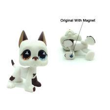 Littlest Pet Shop LPS Great Dane Dog Puppy #577 Blue Brown Eyes Girl Toys Gift