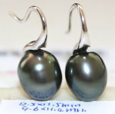 11.5, 11.4mm TAHITIAN SALTWATER PEARL EARRINGS STERLING SILVER