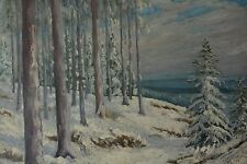 Signed Signature illegible Vintage Winter Forest Painting
