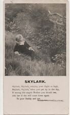 POSTCARD  SONG CARDS  Skylark