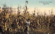 Joplin Missouri Western Corn Field Farmer Antique Postcard K51868