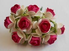 PK 10 panna e rosa rose aperte per le schede e artigianato