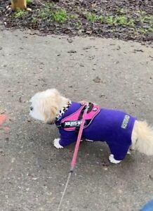 Used equafleece Polartec dog coat with Four legs waterproof Purple 16PU Size