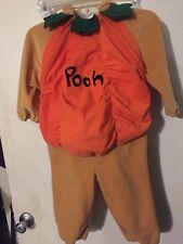 Disney Store Plush Winnie Pooh Pumpkin Halloween Costume Boy Girl Sz 18- 24  2T?