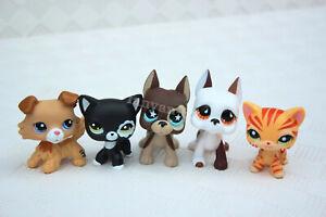 5 PCS  Toys Littlest pet shop Great Dane Dog Collie puppy Short Hair Cat Rare