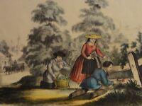 DAS BLUMENPFLÜCKEM im Sommer Farb-Lithographie um 1850 von Kanning, Hamburg