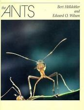 The Ants by Edward O. Wilson and Bert Hölldobler (1990, Hardcover)