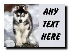 Siberian Husky Personalised Jumbo Magnet