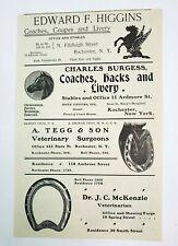 1902 Rochester New York Advertisement Horse Vet Tegg McKenzie Ness Higgin Gottry