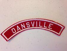 BSA Dansville RWS (CSP) Community Strip