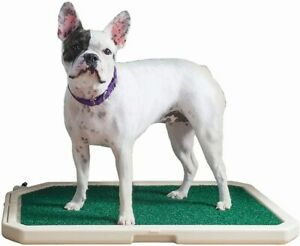 NEW PetSafe Piddle Place Indoor/Outdoor Dog Potty Alternative to Dog Pads