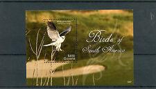 Guyana 2012 MNH Birds of South America 1v S/S I White-tailed Kite Birds Prey