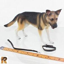 German 1940 Fashion - German Shepherd Dog - 1/6 Scale Blackbox Action Figures