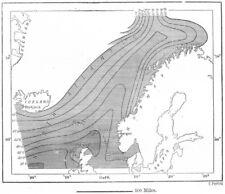 Atlantic. isotérmico líneas, NE, Mohn, dibujo mapa c1885 Tabla De Antiguo Viejo