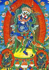 "32"" Tibet Buddhist Thangka Simhamukha Dakini Goddess Female Icons of Liberation"