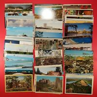 Lot of 100 Vintage Postcards Mostly Unused Animals Buildings Landscapes & More 3