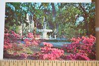 C 1960 Forsyth Park - Savannah Georgia Postcard