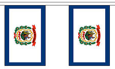 WEST VIRGINIA U.S. STATE BUNTING 9 metres 30 flags Polyester flag
