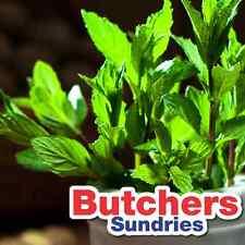 250g of Garden Mint Glaze Marinade Meat Rub Spice  Butchers-Sundries