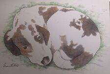 Brittany Spaniel - small, art reproduction, artist, ink, realism, animals