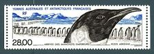 TAAF - PA - 1994 - L'arrivo dei pinguini imperiali