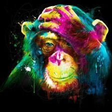 "NEW Monkey Canvas Wall Art 20x20"" Original Picture"