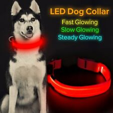 HiGuard LED Dog Collar USB Rechargeable Glowing Night Safety Sz. Large Red