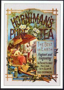 Modern Postcard: HORNIMAN's PURE TEA - Best on Earth. Retro Advert Opie (ROEMP6)